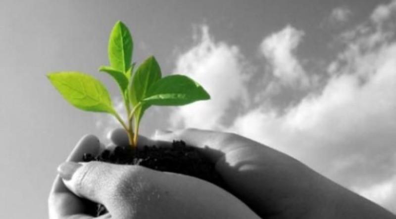 Εργαστήρια πράσινης επιχειρηματικότητας στην Κρήτη