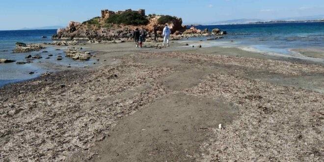 Α. Τσελέντης: Δεν δείχνει σεισμό η υποχώρηση της θάλασσας