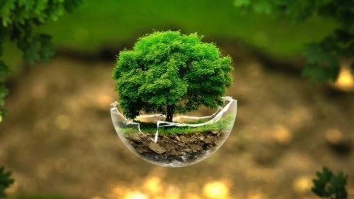 Παγκόσμια Ημέρα της Γης: Το 2,8% των οικοσυστημάτων παραμένει ανέπαφο