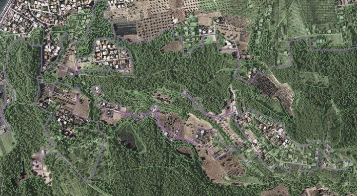 Δασικοί χάρτες: Φρύγανα και ασπάλαθοι δεν συνιστούν δάσος