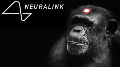 Η εταιρεία Neuralink του Ι. Μασκ παρουσίασε μαϊμού με ασύρματα εγκεφαλικά τσιπάκια να παίζει βιντεοπαιχνίδι μέσω του νου της