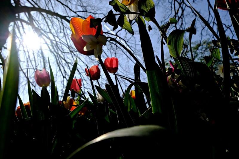 meteo: Ρεκόρ υψηλών θερμοκρασιών την Κυριακή του Πάσχα