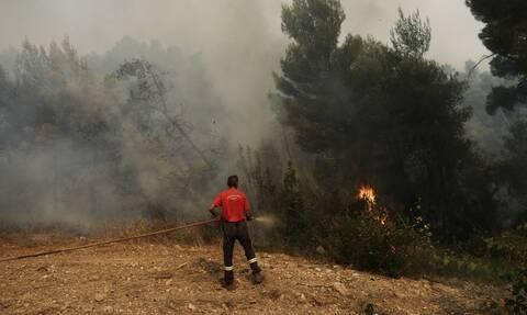 Σε εξέλιξη πυρκαγιά στην Κερατέα