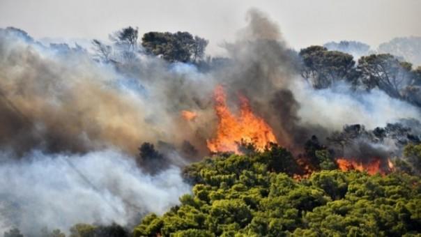 Πυρκαγια σε δασική έκταση στο Δήμο Ακτίου - Βόνιτσας