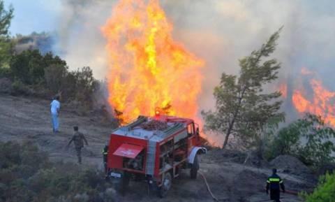 Μάχη με τις φλόγες σε Γορτυνία και Ηλεία