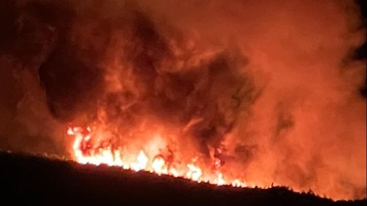 Πάνω από 94.000 στρέμματα κάηκαν στα Βίλια και 5.317 στην Κερατέα