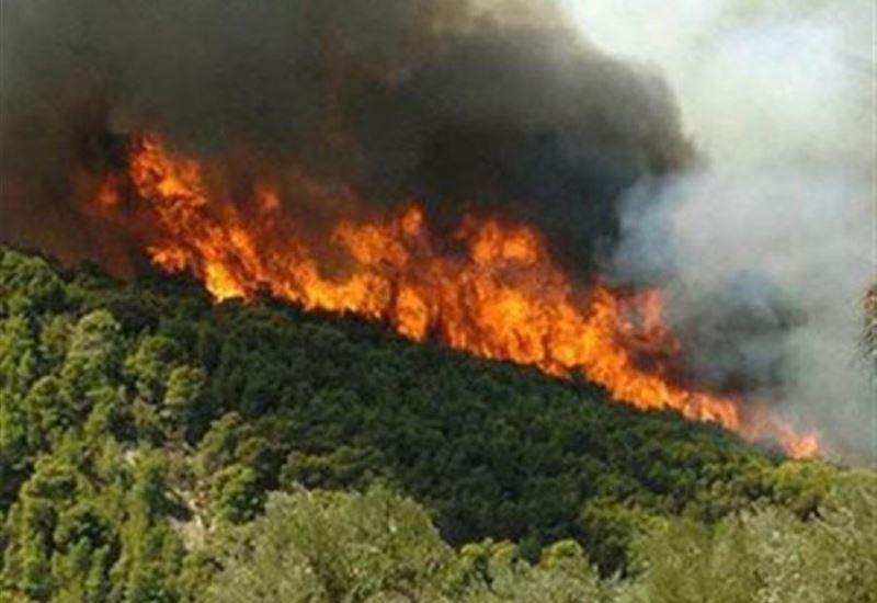 Το τελευταίο 24ωρο ξέσπασαν 45 δασικές πυρκαγιές στην Ελλάδα