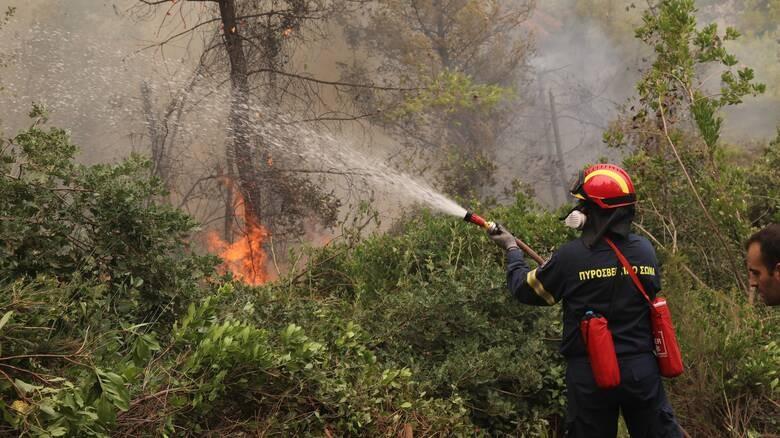 Μικρές εστίες φωτιάς στη Γορτυνία