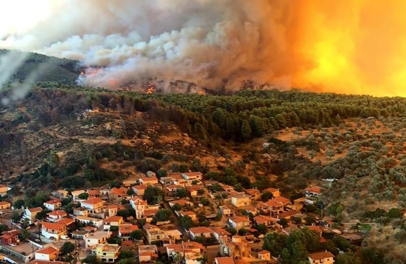 Αστεροσκοπείο Αθηνών: Πτωχώτερη κατά 930.000 στρέμματα δασών η Ελλάδα