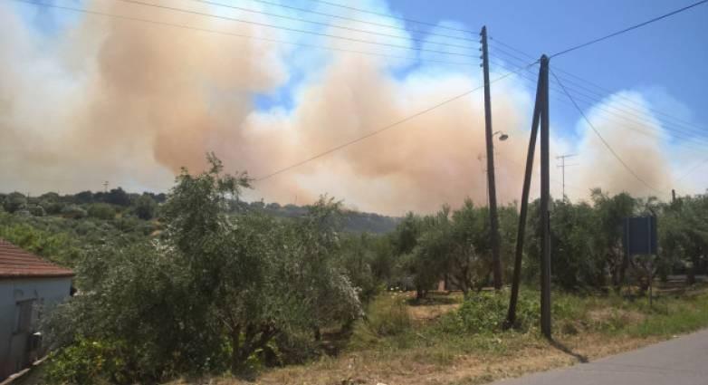 Μεσσηνία: Συνεχίζεται η μάχη με τις φλόγες στο Βασιλίτσι