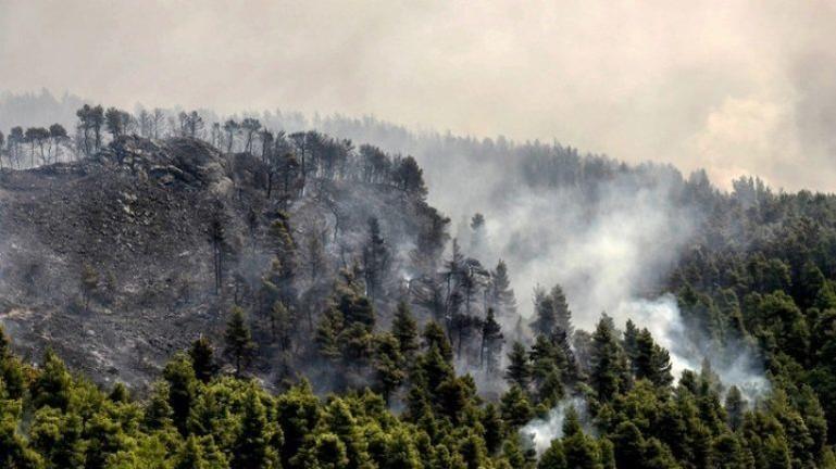 Βουλγαρία: Δυο νεκροί σε δασικές πυρκαγιές στη χώρα