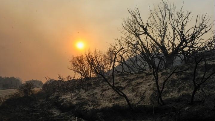 Φωτιά στη Ρόδο: Εκκενώθηκαν χωριά - Προς αποκατάσταση ηλεκτροδότησης - Σε ύφεση  Αγρίνιο-Αχαΐα