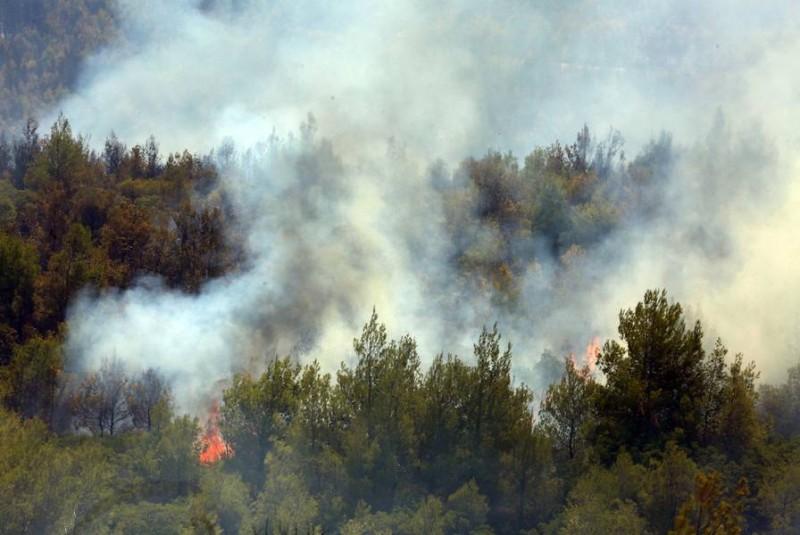Βίλια- Πυρκαγιά: Στο νότιο μέτωπο όλες οι δυνάμεις για προστασία του κάμπου Μεγάρων  (upd 21.35)