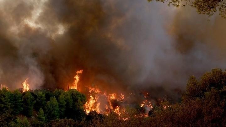Πυρκαγιά από την Αλβανία πέρασε προς Θεσπρωτία