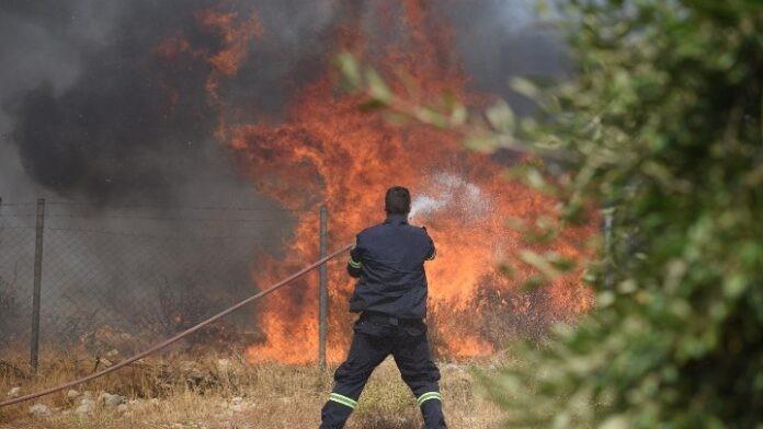 Πυρκαγιά σε δασική έκταση στην Ανάβυσσο