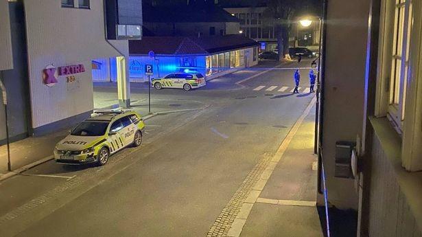 Νορβηγία: Μεγάλος αριθμός τραυματιών και νεκρών από επιθέσεις με τόξο και βέλη